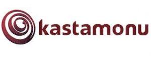 Виробник ламінату Kastamonu